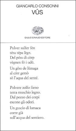 Copertina del libro Vûs di Giancarlo Consonni