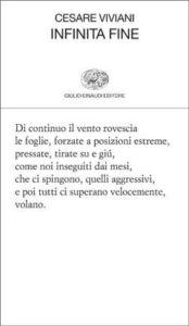 Copertina del libro Infinita fine di Cesare Viviani