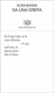 Copertina del libro Da una crepa di Elisa Biagini